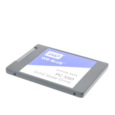 WD Blue (500GB, M.2 2280)