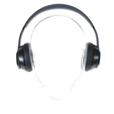 Beats Solo2 Wireless (On-Ear, Black)